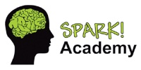 Spark Academy (Leicester & District Mutual Football League)