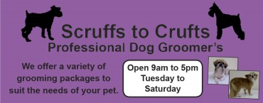 Scruffs to Crufts